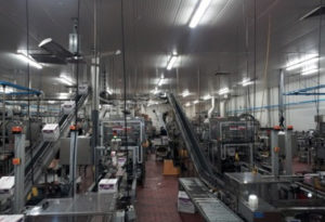 Standard Knapp's 939EZ Versatron™ case packer in action at Royal Wine's facility
