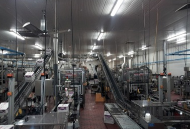 Global Wine Company Increases Production with New Case Packers